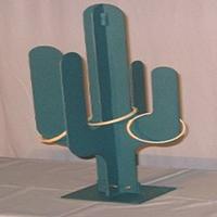 18. Cactus Toss